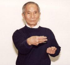 Ip Chun