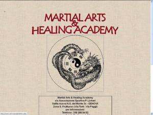 Martial Arts Healing Academy