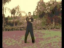 Embedded thumbnail for Wing Chun old tape