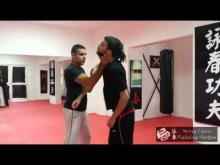 Embedded thumbnail for Wing Chun Fighting System