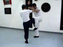 Embedded thumbnail for Wing Chun Footwork