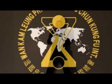 Embedded thumbnail for Wan Kam LeungPractical Wing Chun SiFu Veka